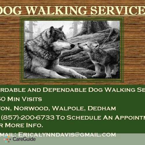 Pet Care Provider Dog Walking Services's Profile Picture