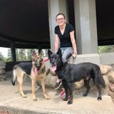 For Hire: Great Pet Caregiver in Jackson, Michigan