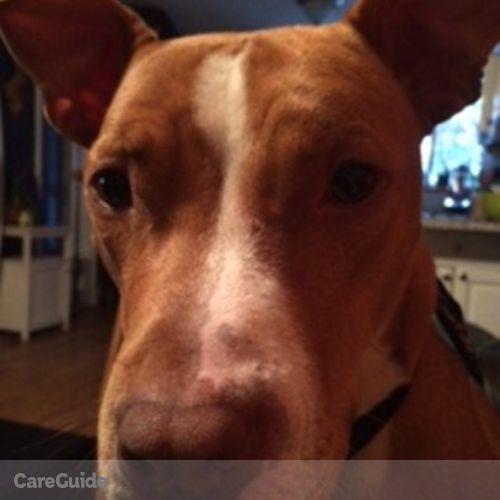 Pet Care Job Mimi J.'s Profile Picture