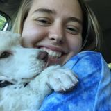 Pet sitting professional in Boone