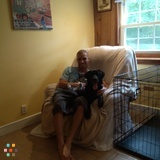 Pet Sitter in Stow