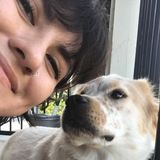 San Marcos Dog Sitter Interested In Work in Texas