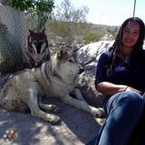 Dog Walker, Pet Sitter in Hesperia
