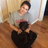Fairport pet sitter from exotics to everyday pets