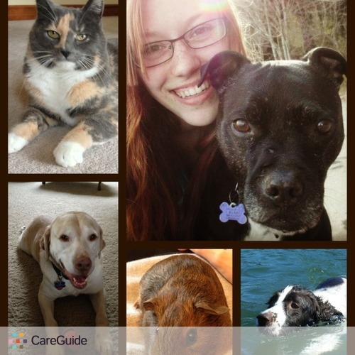 Pet Care Provider Brittany Marthaller's Profile Picture