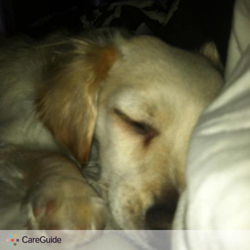 Pet Care Provider Mary Torrecilla's Profile Picture