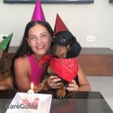 Dog Walker, Pet Sitter in Miami Beach