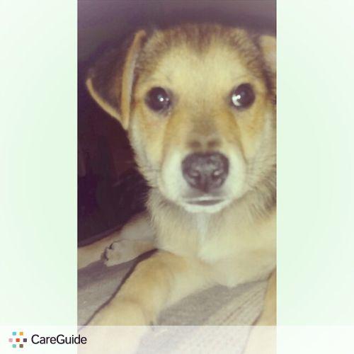 Pet Care Provider Melissa R's Profile Picture