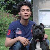 Loving Pet Service Provider for Hire