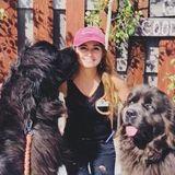 I love pets! 3