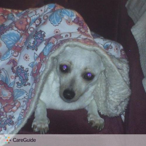 Pet Care Provider Brandi Sindle's Profile Picture