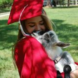 Pet Sitter With A Lot Of Experience