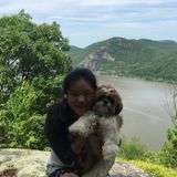 Available: Seasoned Pet Care Provider in Syosset