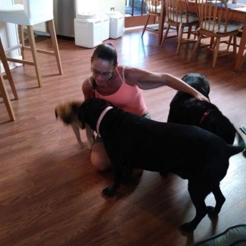 Pet Care Provider Jenny R Gallery Image 3