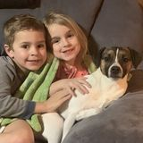 Nanny needed for 2 kids.