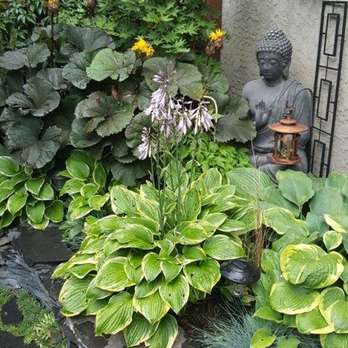 Gardener Provider Laura E Gallery Image 1