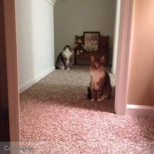 Pet Care Provider Megan Coggins's Profile Picture