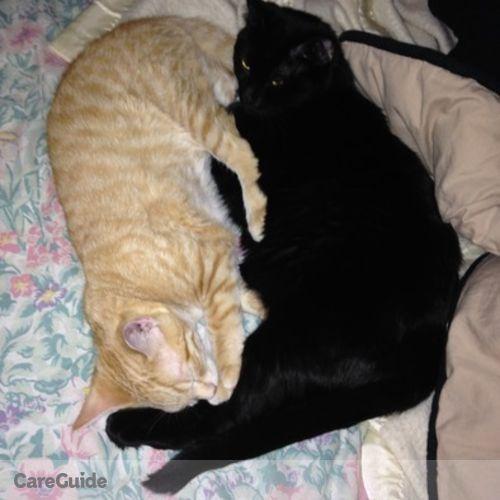 Pet Care Job Derek S's Profile Picture