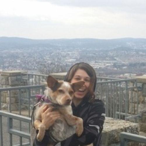 Pet Care Provider Amy C's Profile Picture