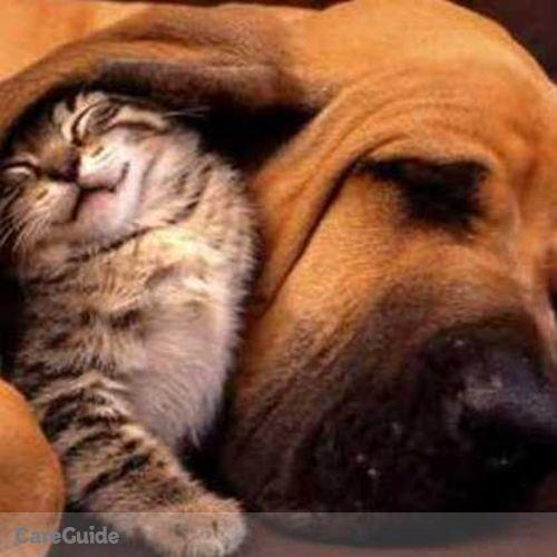 Pet Care Provider Nuvo Pets's Profile Picture