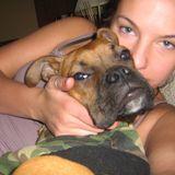 Well Trained Dog Sitter/Walker in Etobicoke
