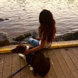 Energetic and flexible pet sitter looking for tasks