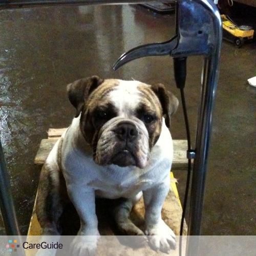 Pet Care Provider Jennifer Beserra's Profile Picture