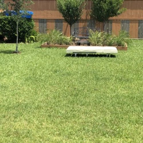 I need a experienced professional gardener to come every other week to mow our lawn front back and a small amount on the side