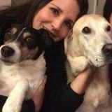 Excellent house and pet sitter (including mail, trash recycle and plants)